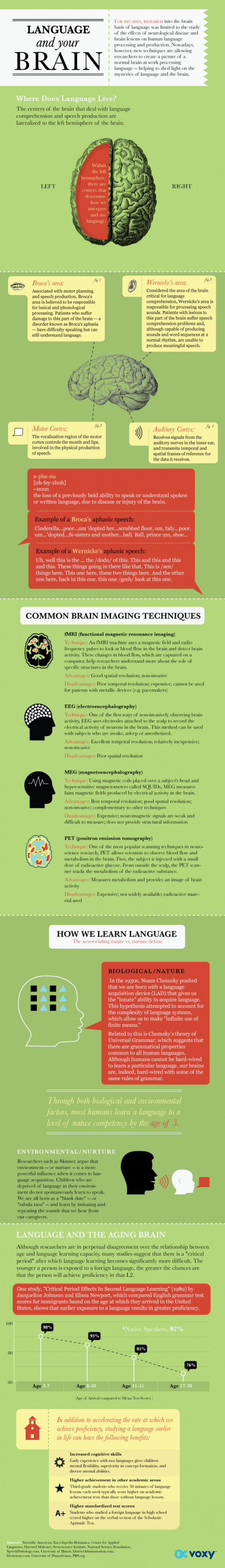 Language_Brain