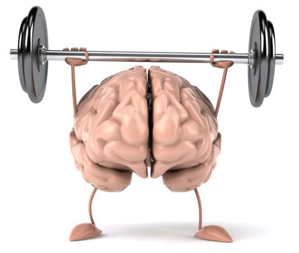 Language learning can increase brain size! - Voxy